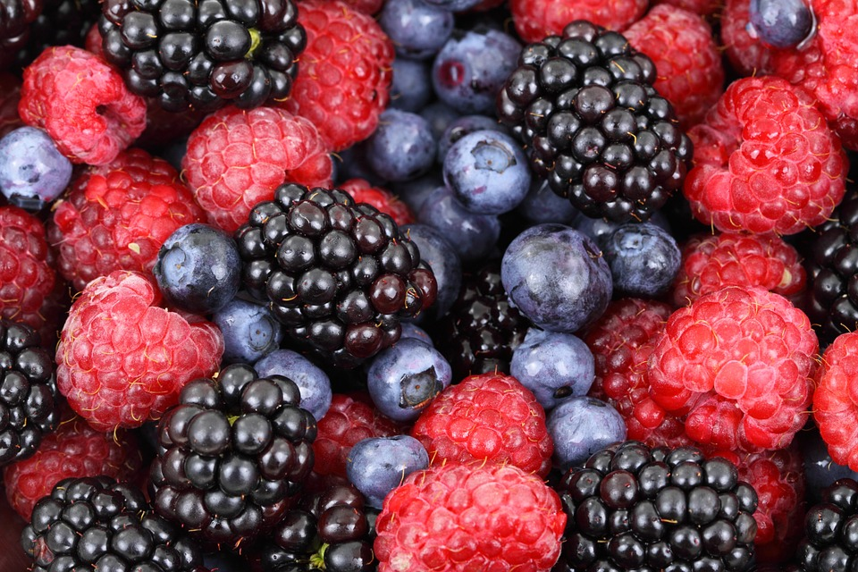 berries to add to healthy oat bars