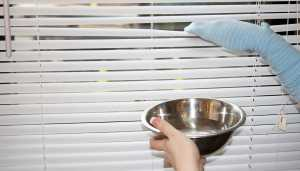 blinds cleaning hack