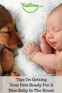 tips-on-getting-your-pets-ready-for-a-new-baby-in-the-house