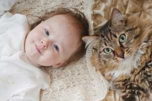 cat-and-baby-child