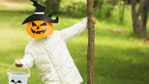 ideas for kids halloween costumes Halloween Camps in Ireland