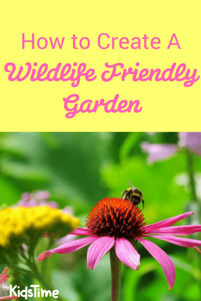 wildlife friendly garden