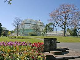 things to do in dublin for teens botanic-gardens