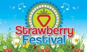 strawberry festival wexford