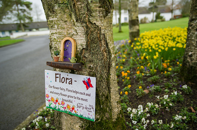 fairy trail at irish national stud Spring walks for families in Ireland