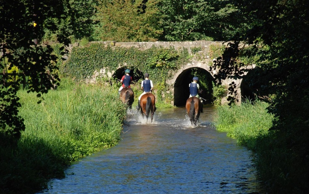 Things to Do in Tipperary Tourism Crossogue Equestrian Centre