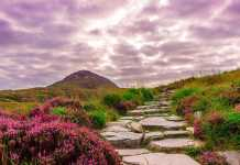 low cost things to do in Ireland for families