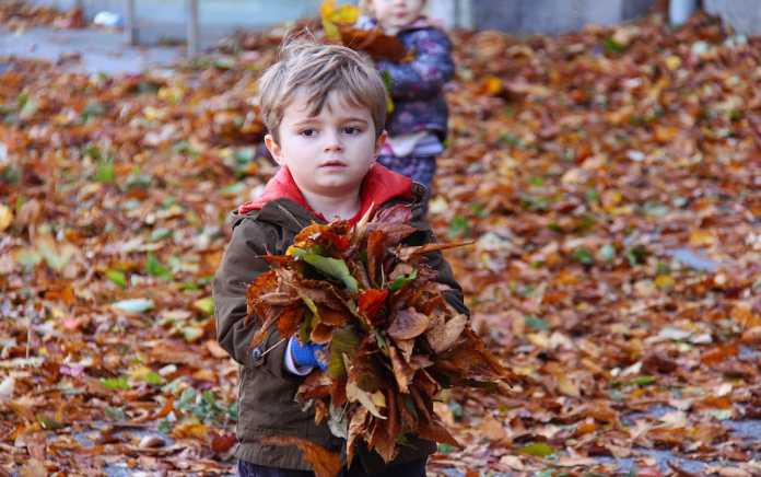 Autumn walks for families in Ireland