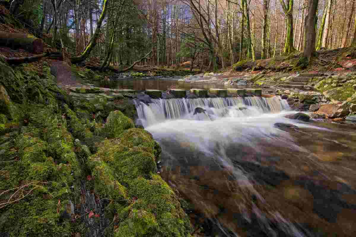Tollymore National Park for autumn walks in Ireland