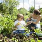 gardening with your kids tips to encourage your kids to garden