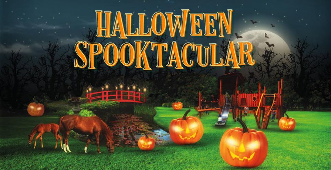 Irish National Stud things to do in Ireland at Halloween midterm