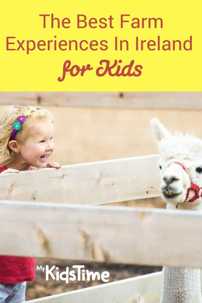 Farm Experiences In Ireland for Kids