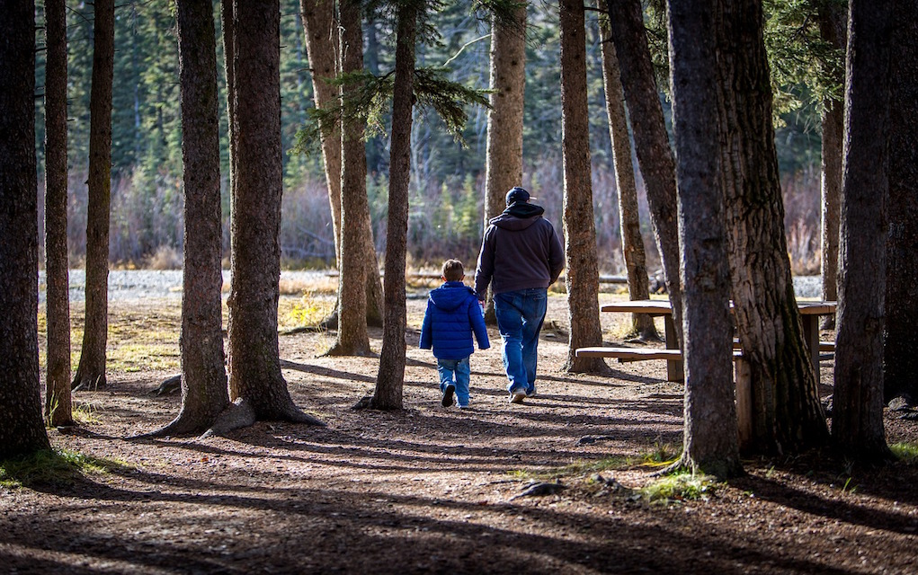 wonderful winter walks for families in Ireland