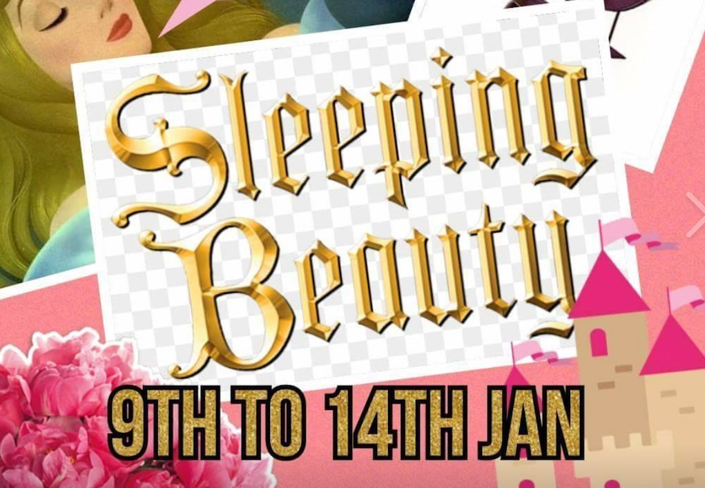 dundalk musical society sleeping Beauty best pantos Ireland