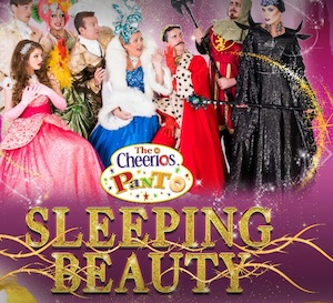 sleeping beauty the cheerios panto best pantos ireland