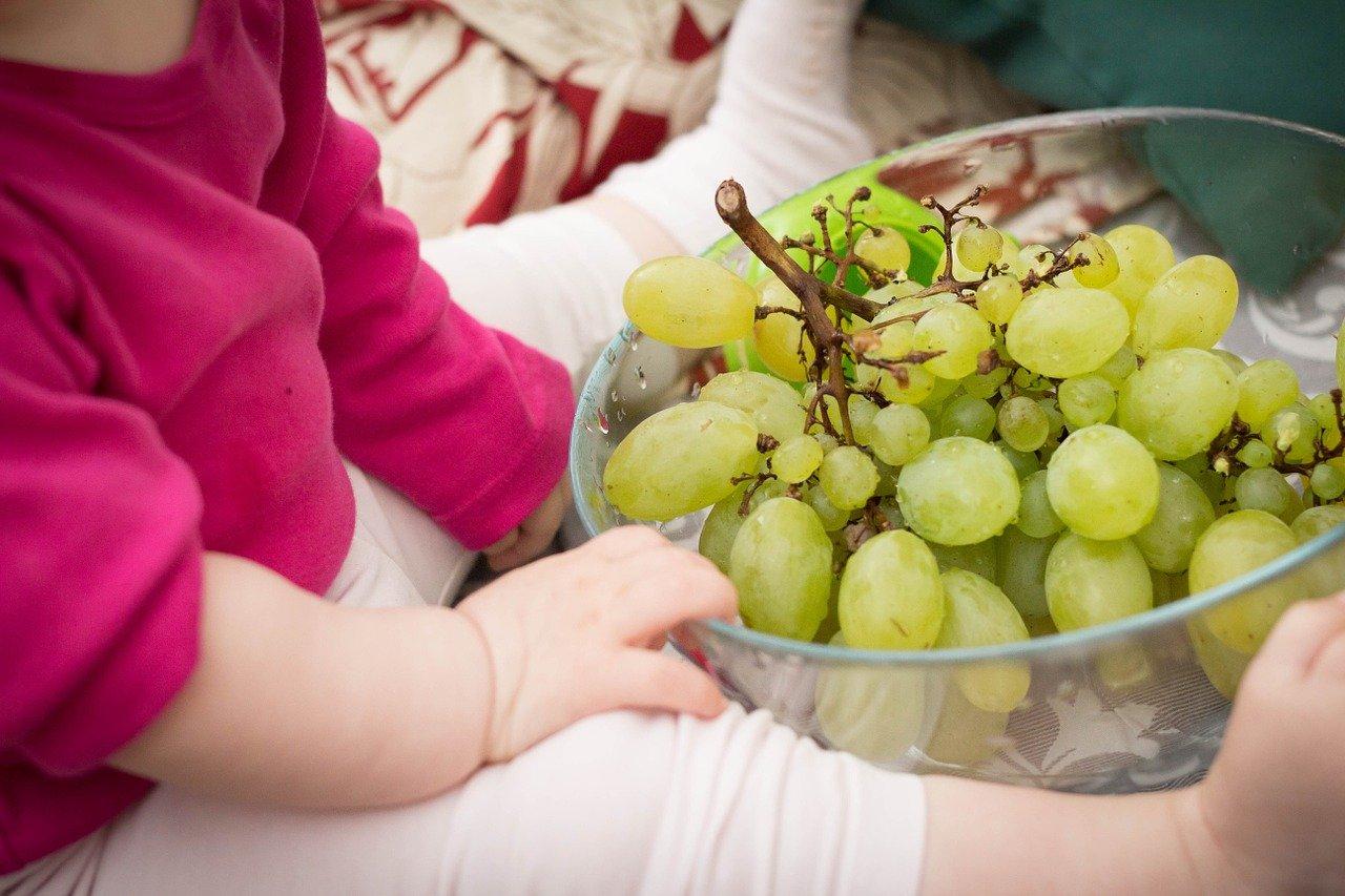grapes choking hazards
