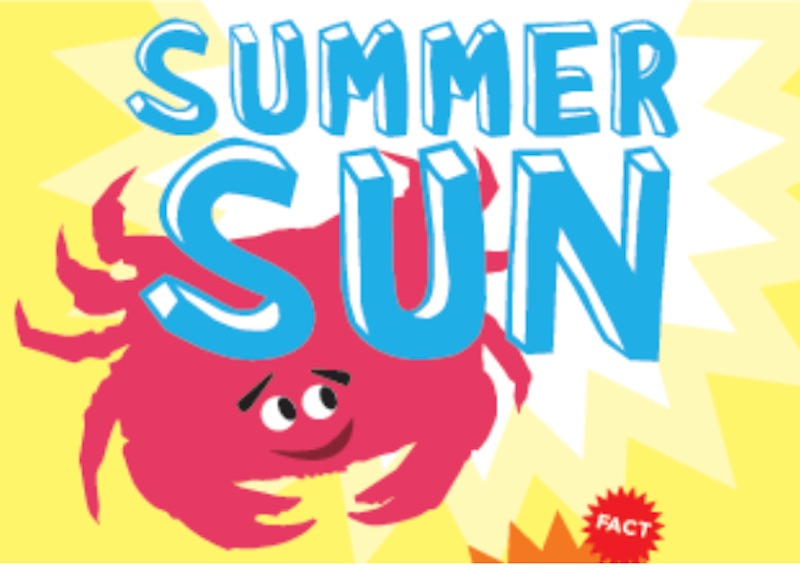 summer sun seasonal activity sheet for national musuem of Ireland Natural History