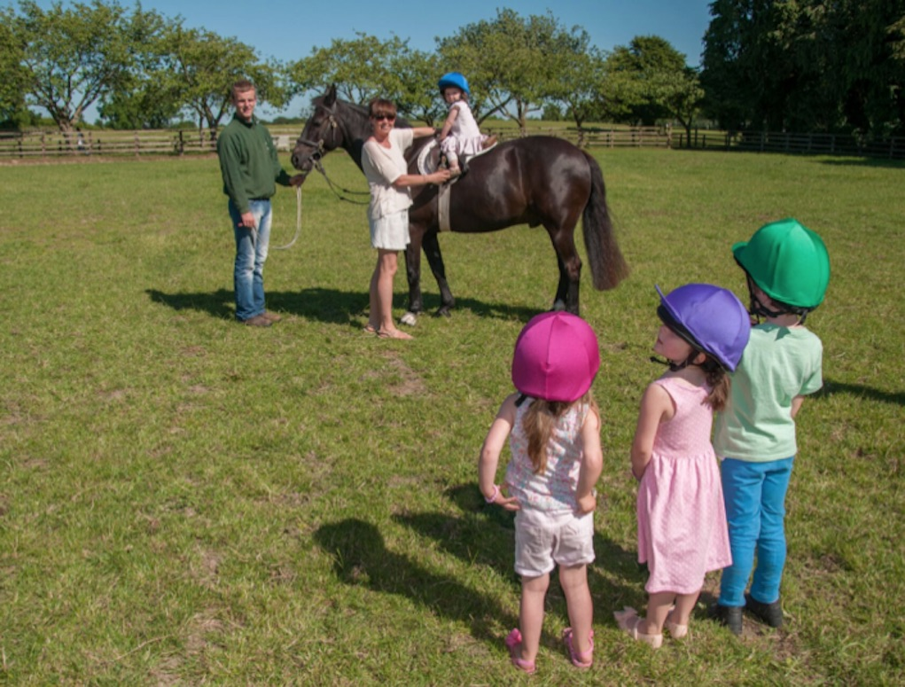 rish National Stud Pony Rides Things to do around Ireland at Easter