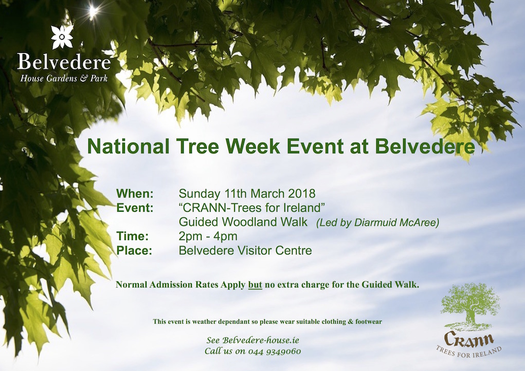 things to do in Ireland with kids Belvedere House National Tree Week 2018