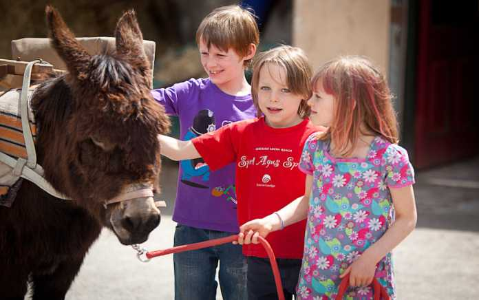 slieve aughty centre kids with pony