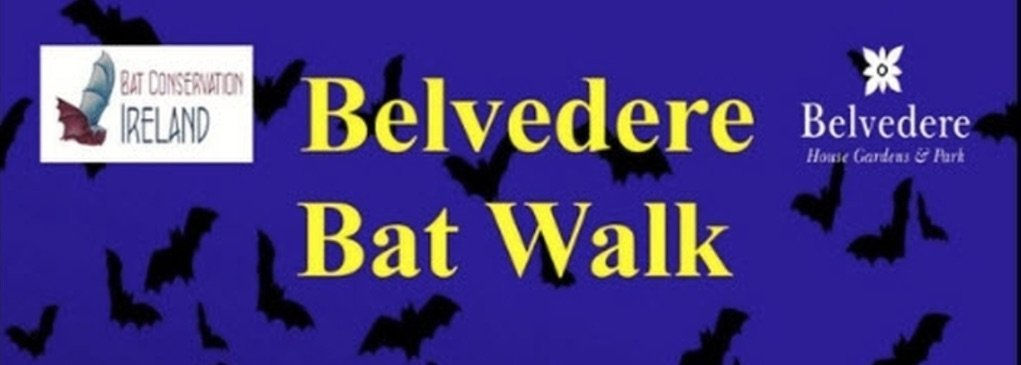 Belvedere Bat Walk in association with Bat Conservation Ireland