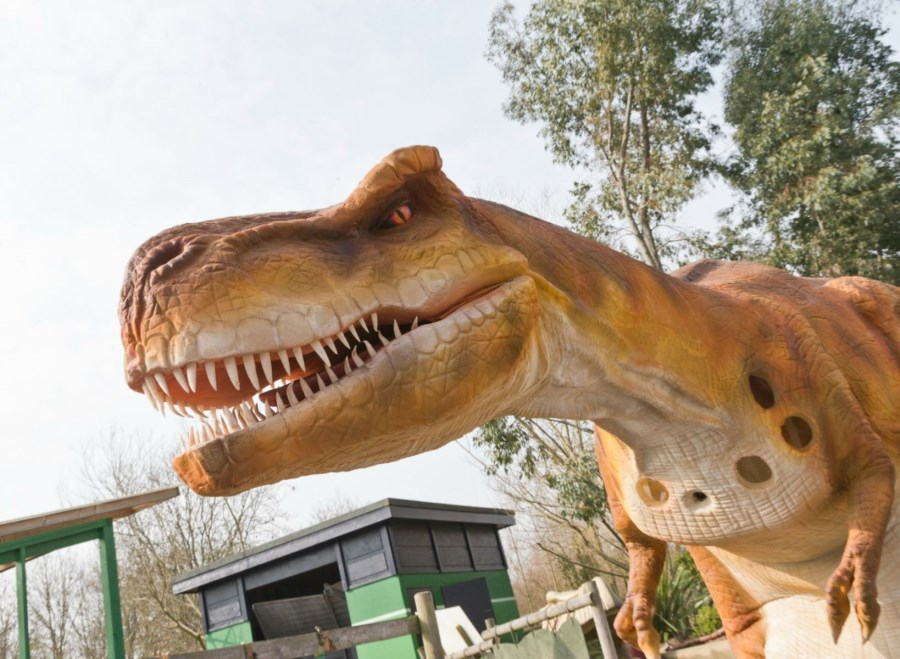 Gulliver's Dino and Farm Park