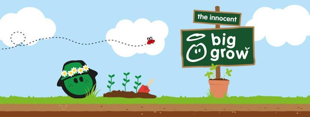 The innocent big grow ideas to encourage your child to grow their own