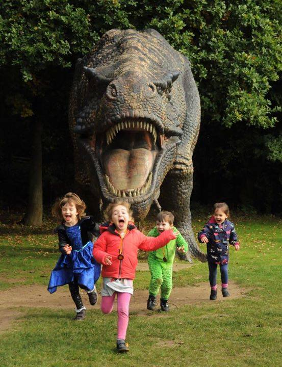 roarr dinosaur adventure norfolk