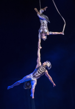 win tickets to Cirque Du Soliel OVO in Dublin