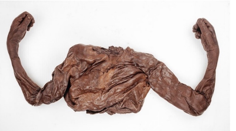 NMI National Museum of Archaeology bog bodies horrible histories in Ireland