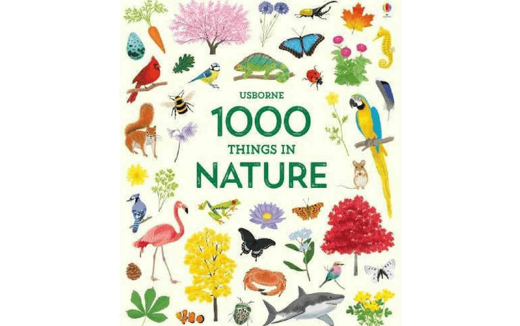 Learn about nature with 1000 Things in nature book