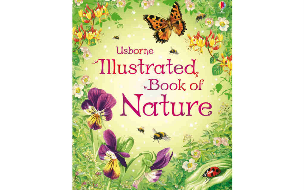 Learn about nature with Usborne illustrated book of nature