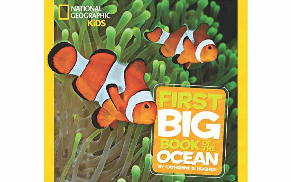 Learn about nature with First big book of the Ocean by National Geographic Kids