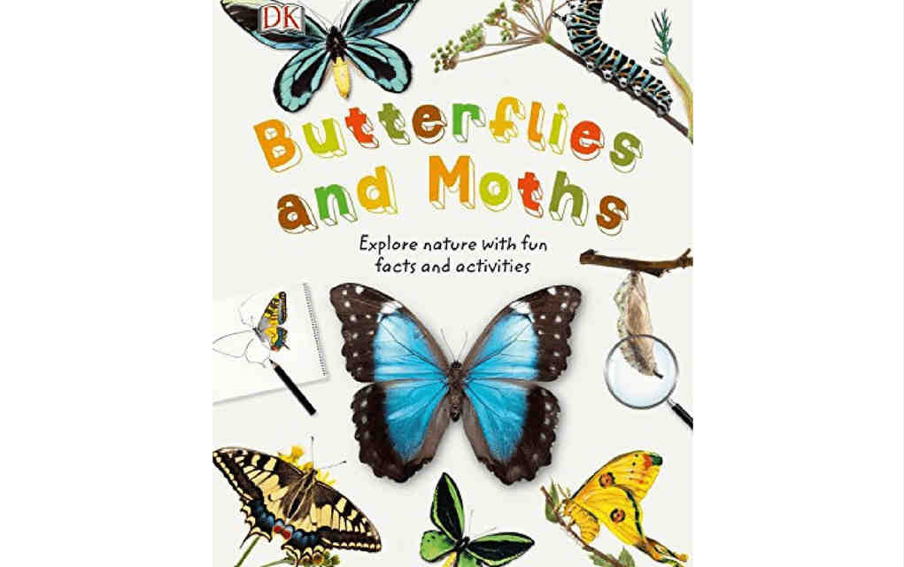 Learn about nature with butterflies and moths book