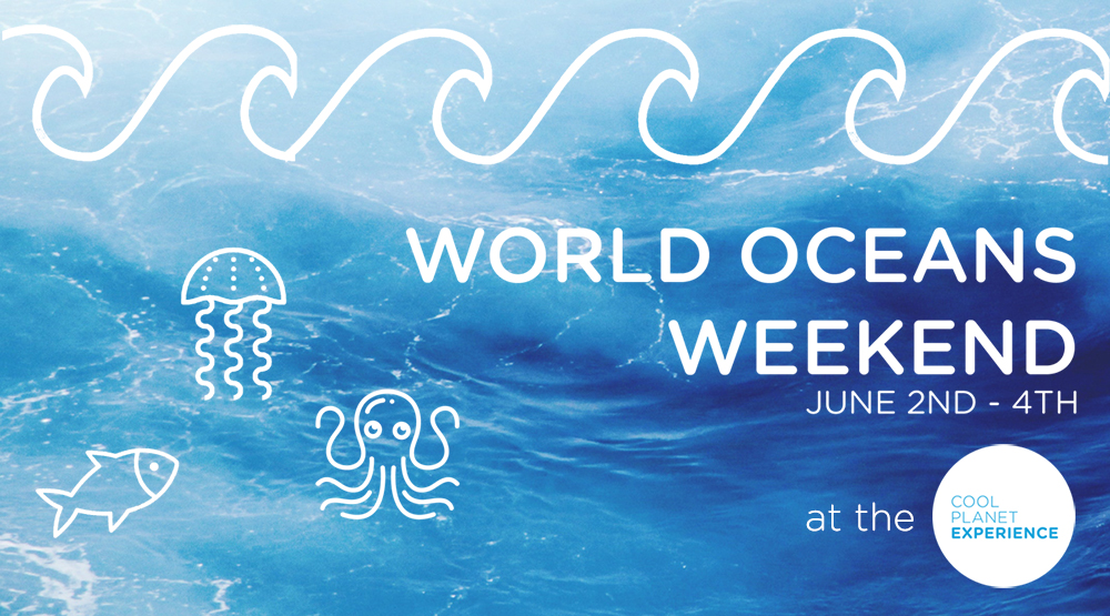 World Oceans Weekend at Cool Planet Experience Things to do