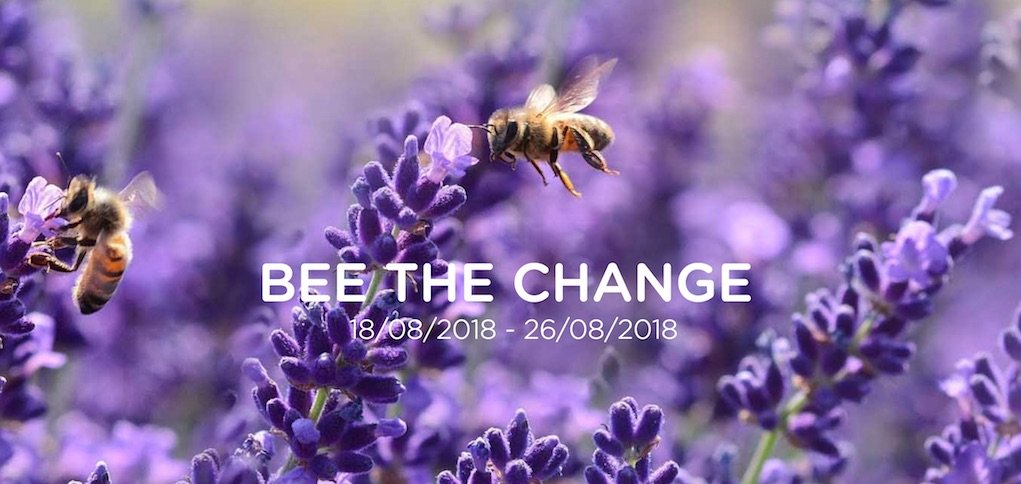 Bee the Change at Cool Planet Experience