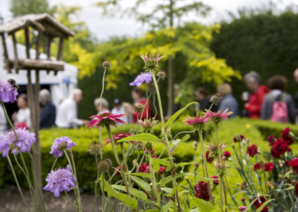 Carlow Garden Festival Free Family Friendly Festivals in Ireland