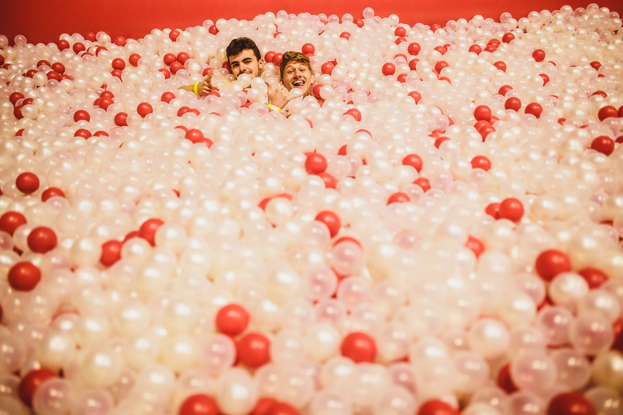 the monster ball pit