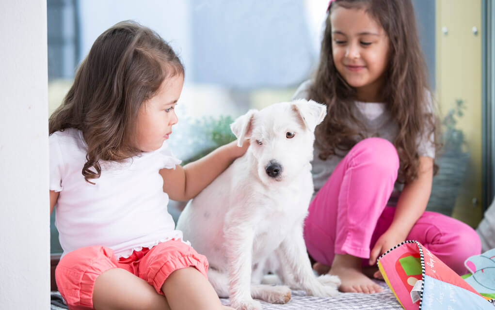 Two little girls with a puppy for clean house with a dog