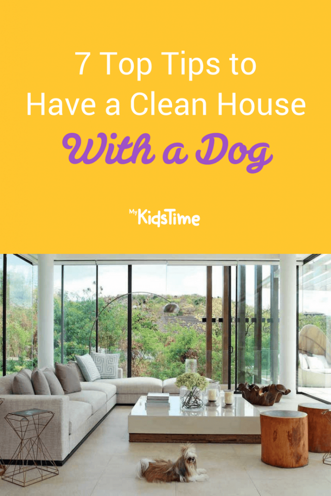 Clean house with a dog