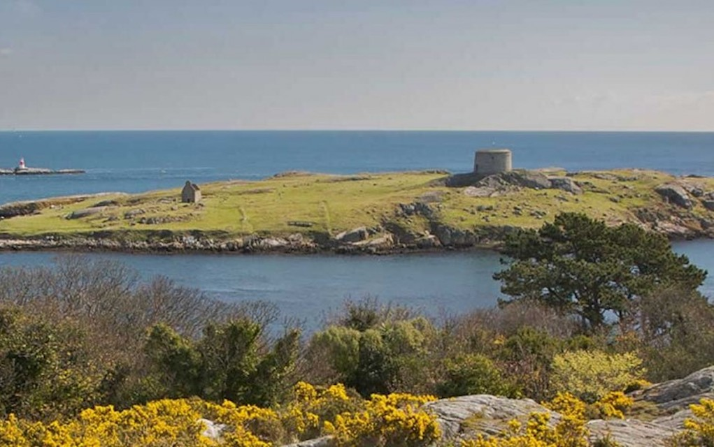 Dalkey ferry tour for boat tours