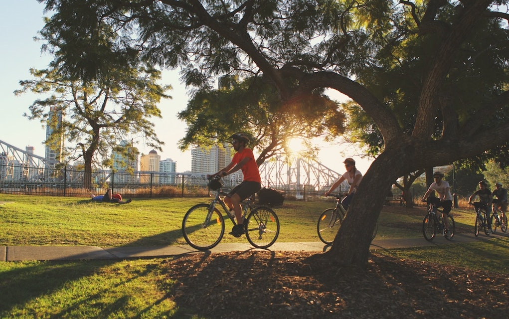 Brisbane bike tours for things to do in brisbane