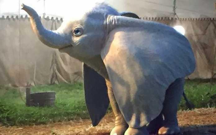 Mykidstime Dumbo live action movie