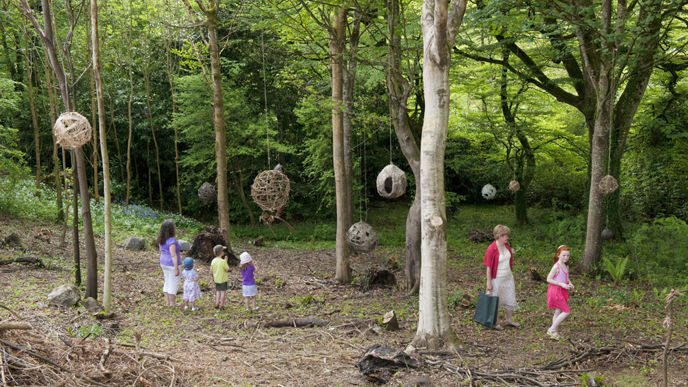 Free things to do in Mayo NMI Country Life Museum Woodland Explorer