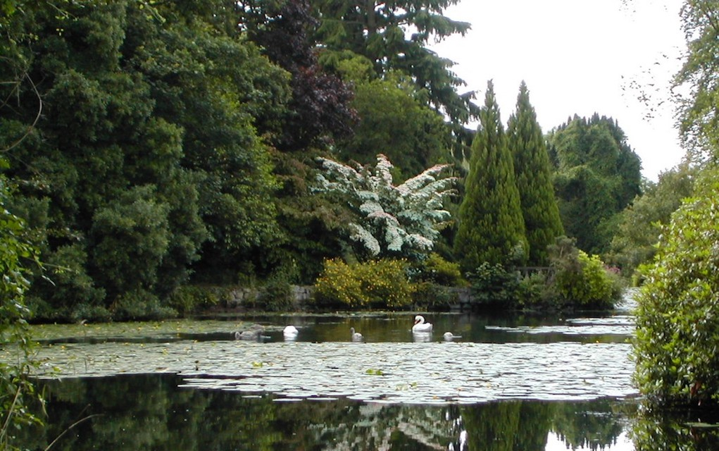Altamount Gardens for free things to do in Ireland