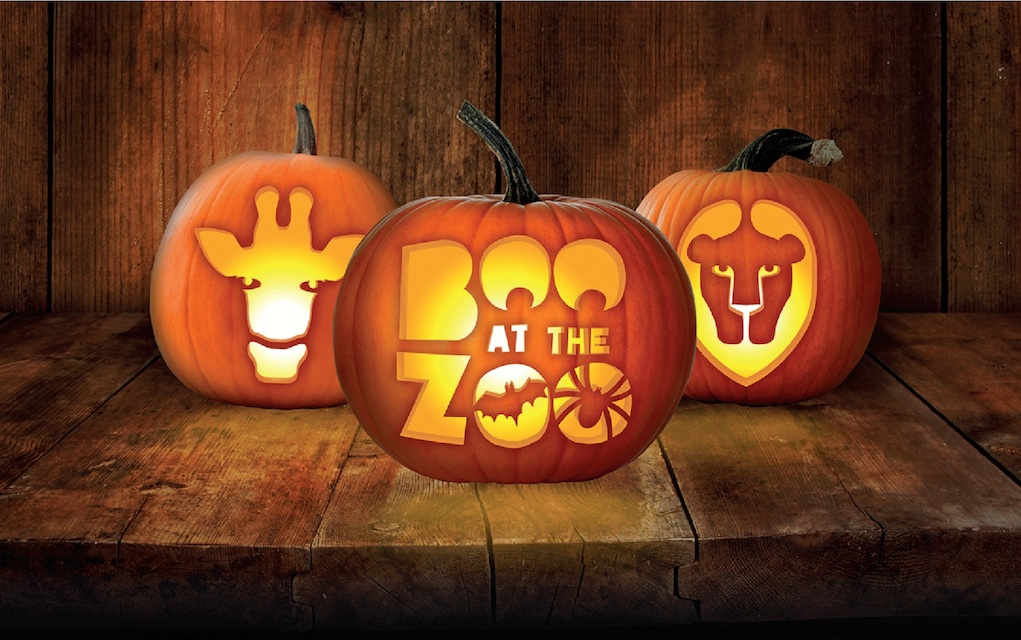 London Zoo for Halloween events