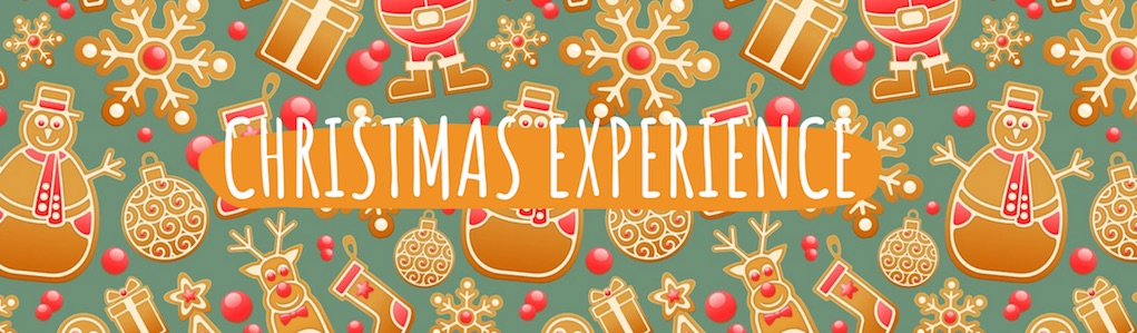 Christmas Experience at Nore Valley Park