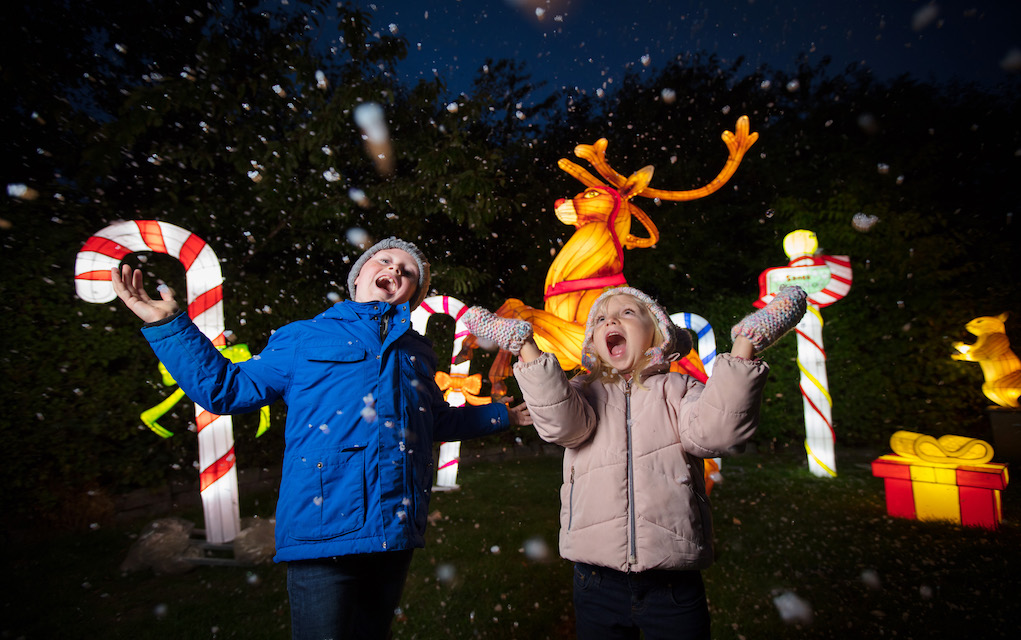 Santa Visits at Dublin Zoo Wild Lights Experience