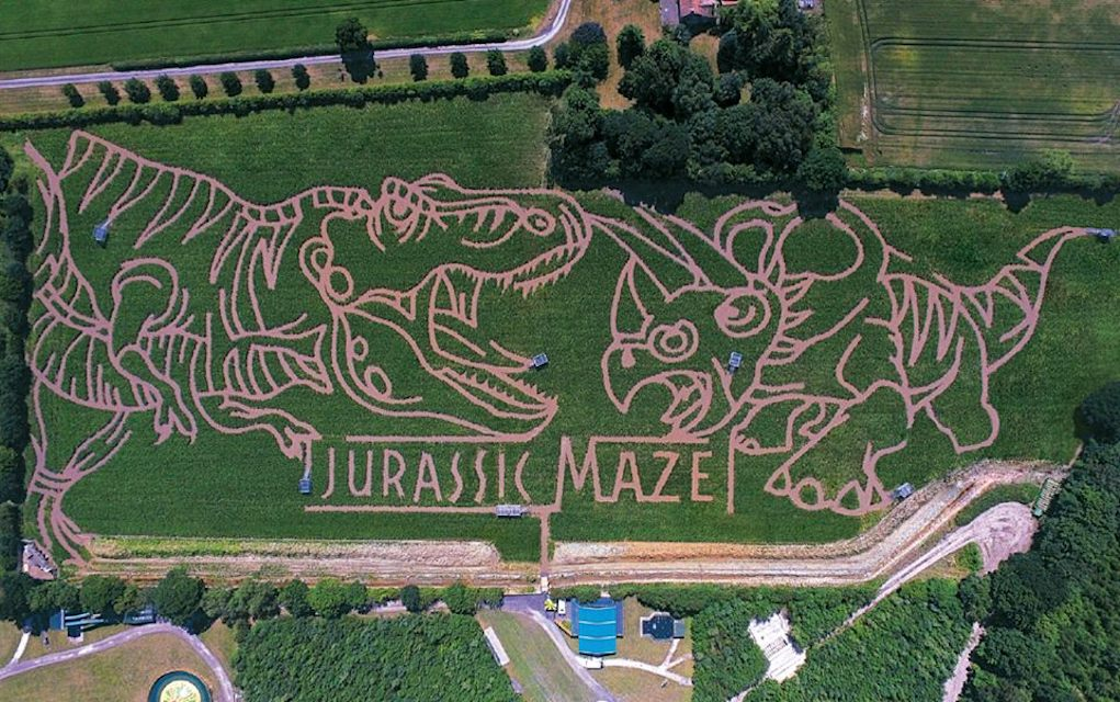 York maze for mazes in the UK