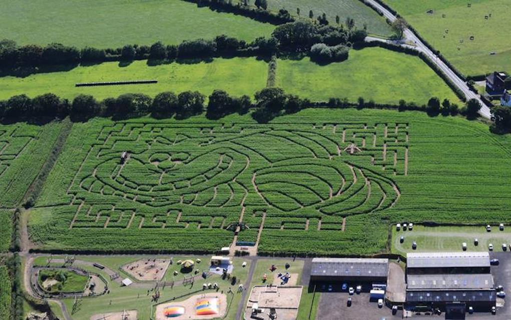 Brimstage maze for mazes in the UK